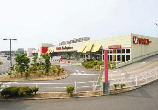 Market City 入曽