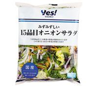 2/3日分の野菜がとれる15品目オニオンサラダ